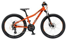Kinder / Jugend KTM WILD SPEED 24.24 Disc M