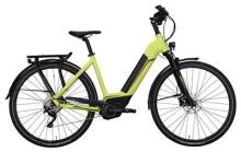 E-Bike Hercules Futura Comp I Zentralrohr Grün