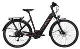 E-Bike Hercules Futura Sport I 8.1 Zentralrohr Schwarz