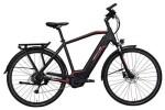 E-Bike Hercules Futura Sport I 8.1 Diamant