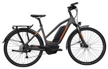 E-Bike Hercules Futura Sport 8.2 Trapez Grau