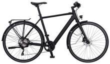 E-Bike Rabeneick TS-E Shimano Deore XT 10-G / Bafang / 252Wh / Disc
