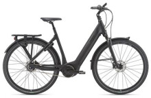 E-Bike GIANT DailyTour E+ 1 LDS