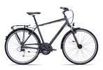 Trekkingbike GIANT Argento GTS