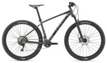 Mountainbike GIANT Terrago 1