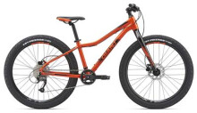 "Mountainbike GIANT XtC jr. 26""+"