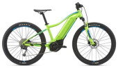 E-Bike GIANT Fathom E+ jr.