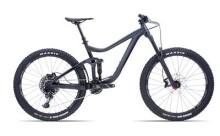 Mountainbike GIANT Reign 2