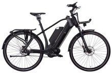 E-Bike e-bike manufaktur 17ZEHN  EXT