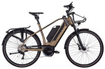 E-Bike e-bike manufaktur 19ZEHN EXT