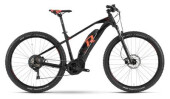 E-Bike Raymon E-Nineray 7.0