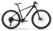 Mountainbike Raymon Nineray 9.0