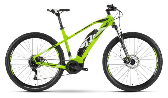 E-Bike Raymon E-Nineray 4.5 Grün 2019