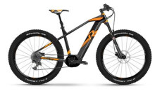 E-Bike Raymon E-Nineray 9.0