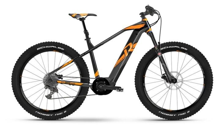 E-Bike Raymon E-Nineray 9.0 2019