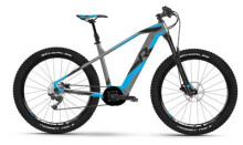 E-Bike Raymon E-Nineray 8.0