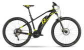 E-Bike Raymon E-Nineray 6.0