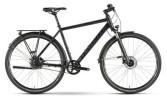 Citybike Raymon UrbanRay 3.0 Diamant
