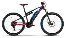 E-Bike Raymon E-NineTrailRay 7.0