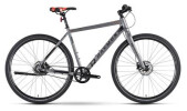 Urban-Bike Raymon UrbanRay 1.0 Diamant
