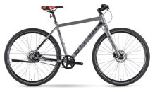 Urban-Bike Raymon UrbanRay 1.0 Diamant