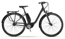 E-Bike Raymon E-Citray 5.0