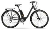 E-Bike Raymon E-Citray 1.0