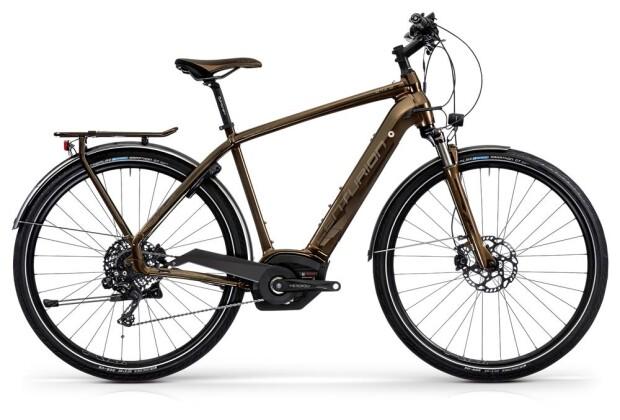 E-Bike Centurion E-Fire Sport R4500i 2019