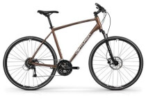 Crossbike Centurion Cross Line Pro 100 kaffee