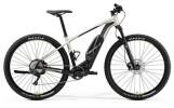 E-Bike Merida EBIG.NINE 600 MATT-TITAN