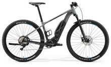E-Bike Merida EBIG.NINE 500 MATT-GRAU