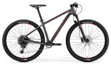 Mountainbike Merida BIG.NINE 600 MATT DUNKELSILBER