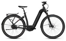 E-Bike FLYER Gotour6 7.63