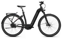 E-Bike FLYER Gotour6 7.63