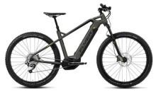 E-Bike FLYER Uproc1 4.10