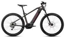 E-Bike FLYER Uproc1 4.10 Heidi