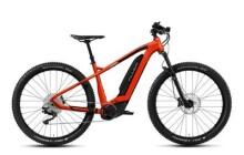 E-Bike FLYER Uproc2 2.10