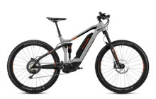 E-Bike FLYER Uproc4 4.10 D1