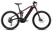E-Bike FLYER Uproc6 4.10 Heidi