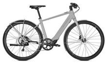 E-Bike Kalkhoff BERLEEN 5.G ADVANCE H grau
