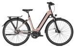 E-Bike Kalkhoff IMAGE 5.S MOVE W schwarz/braun