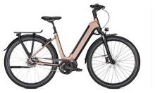 E-Bike Kalkhoff IMAGE 5.S XXL W schwarz/braun