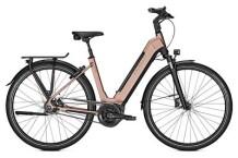 E-Bike Kalkhoff IMAGE 5.B ADVANCE W schwarz/braun