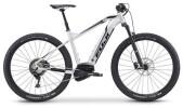 E-Bike Fuji AMBIENT 29 1.1 EVO