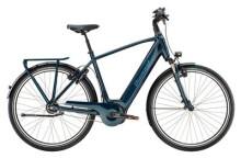 E-Bike Diamant Onyx+ Diamant
