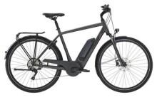E-Bike Diamant Ubari Deluxe+ Diamant