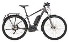 E-Bike Diamant 825+