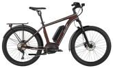 E-Bike EBIKE CROSS PACESETTER