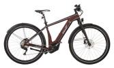 E-Bike EBIKE PURE PACESETTER