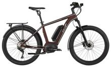 E-Bike EBIKE RACE PACESETTER
